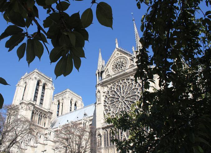 Франция | Париж. Нотр Дам