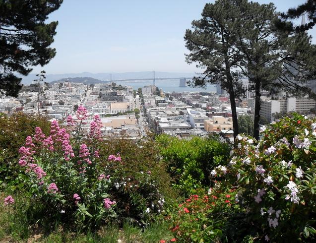 США | Вид на Сан-Франциско