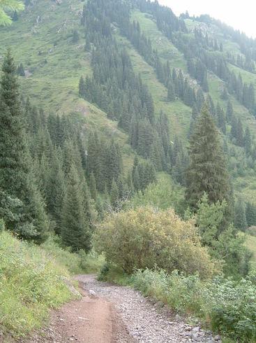 Казахстан | горная дорога Талгарского района Алматинской области