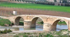 Сирия | руменский мост в африн
