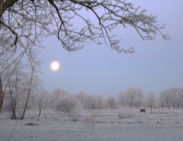 Германия | Зимнее утро .