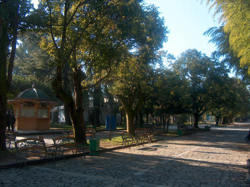 Грузия | park in Batumi<br>