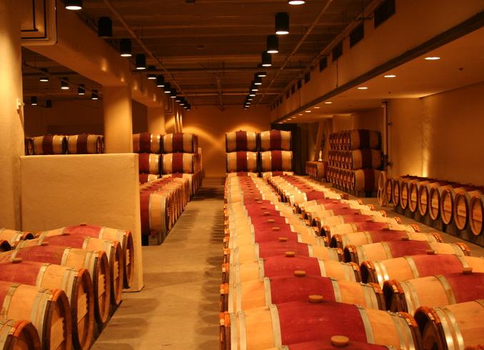 США | Кладовая винодельни, долина Napa