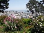 | Вид на Сан-Франциско