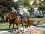 | конные полицаи Белграда патрулируют набережную р.Сава на Аде Циганлии, где расположен пляж