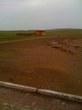 | по дороге в Улан Батор.... степь да степь