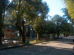 | park in Batumi