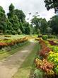 | Ботанический сад, самый красивый в Азии
