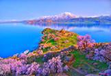 | Армения