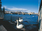 | Женева дышит красотой и уютом: всем здесь хорошо